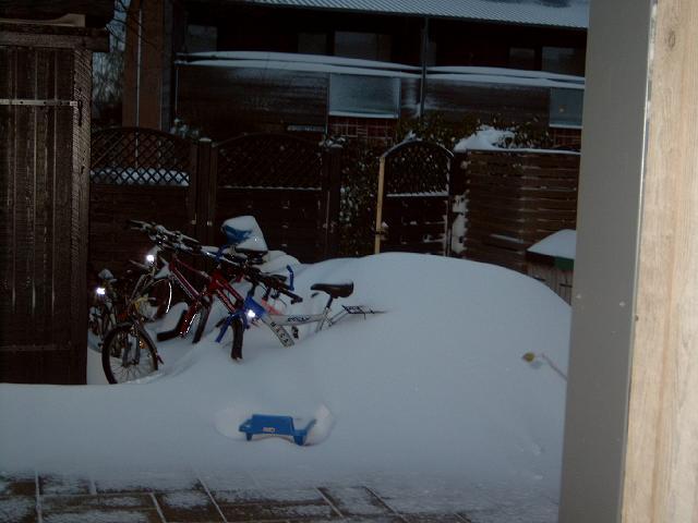 Masser af sne